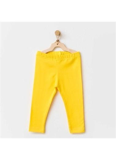 Andy Wawa Andy Wawa Tayt Hello Sunshine Sarı Sarı
